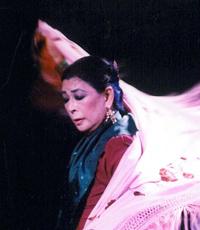 フラメンコの小松原庸子スペイン舞踊団公式Webサイト